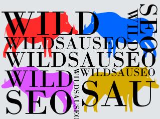 Wildsauseo Seo Contest